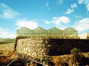 Tanques y paredes rústicas 2