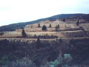 aricoalto1